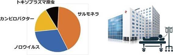 食中毒菌毎の入院者数の円グラフ