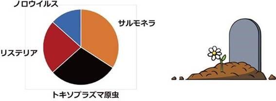 食中毒菌毎の食中毒死者数の円グラフ