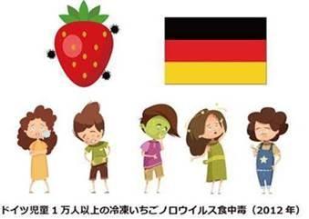 イチゴでノロウィルス食中毒になったドイツの子供