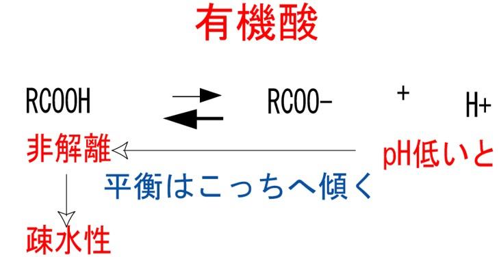有機酸の化学平衡